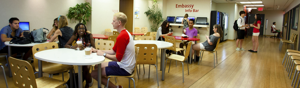 Avis Embassy English New York