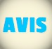 Avis EC English New York